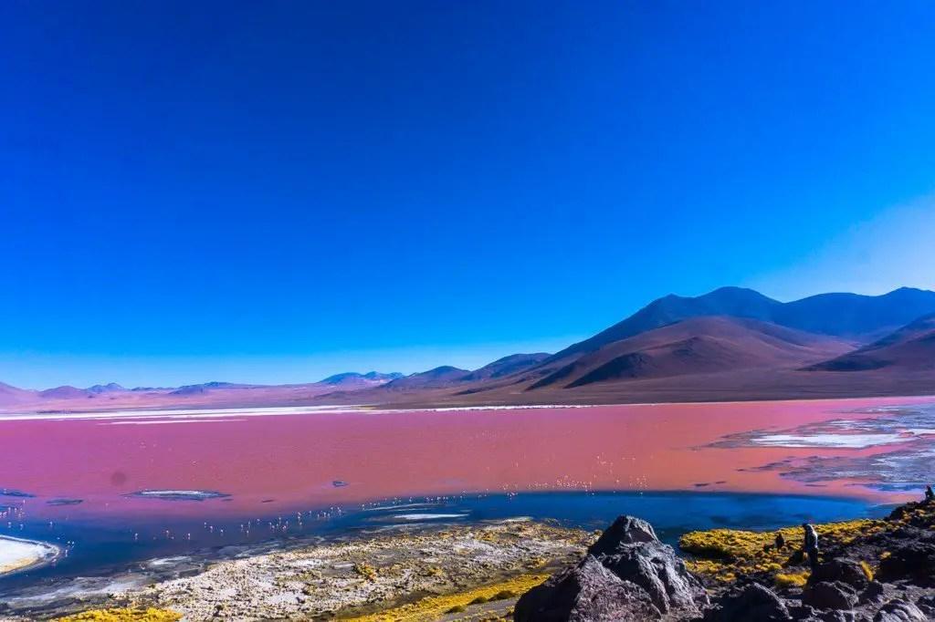 Red Lagoon Eduardo Avaroa