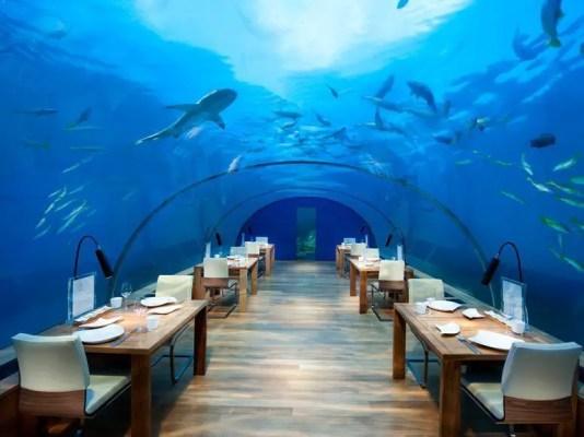 conrad maldives underwater restaurant