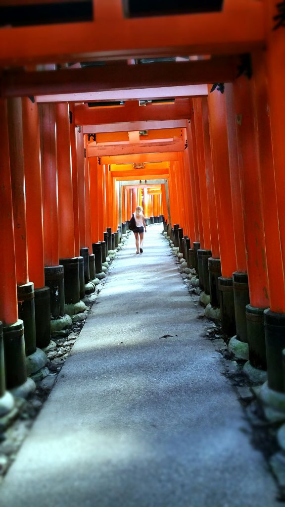 Fushimi Inari morning empty