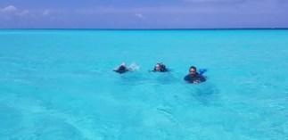 scuba life cozumel open water course