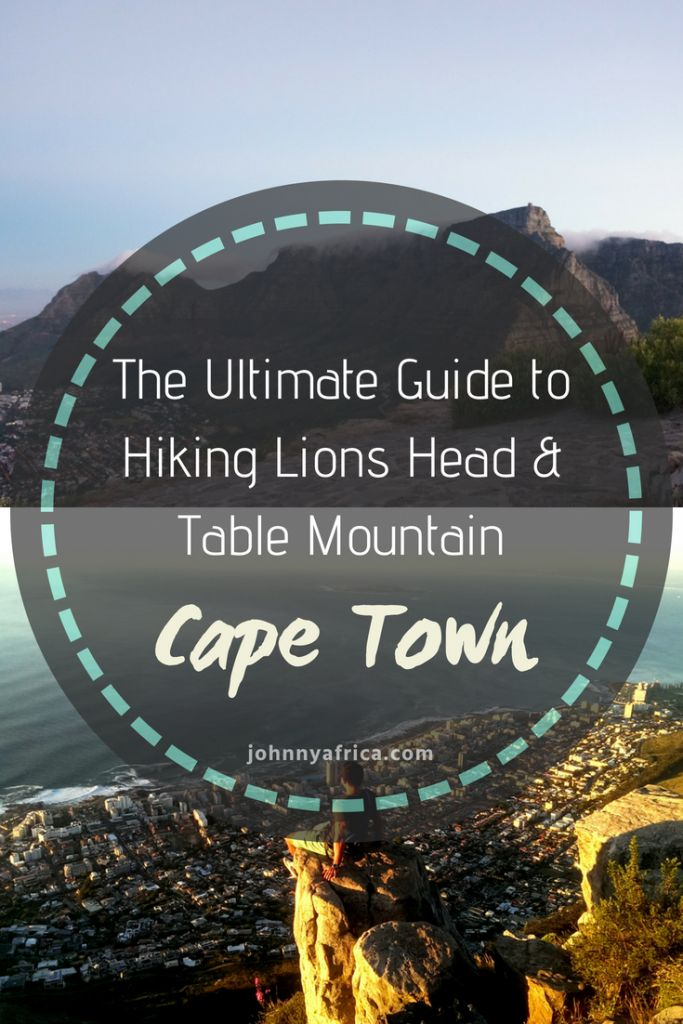 Cape Town Hiking: Ultimate Guide To Table Mountain And Lion's Head
