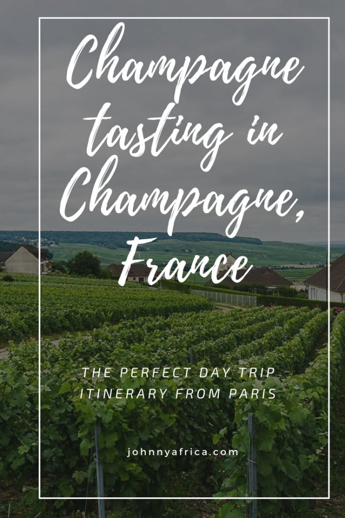 The Champagne region of France is world famous for providing the best bubbly you can find. It is also the perfect day trip from Paris and is an easy trip to do yourself by taking the fast train from Gare de l'est. I visited numerous champagne cellars and vineyards on my trip!