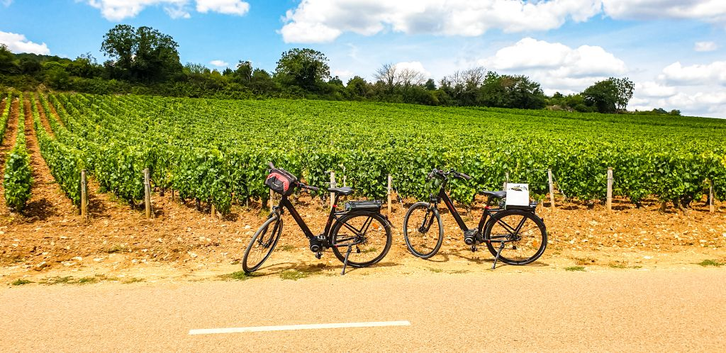 Nothing beats biking Burgundy in my opinion.