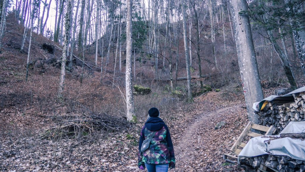 Hiking Lake Bled