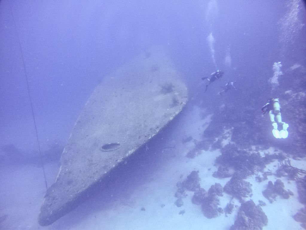 Hilma hooker Bonaire diving