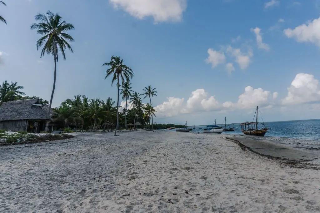 Big Blu dive resort Mafia Island