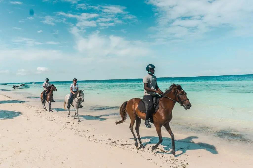 Horseback riding nungwi zanzibar