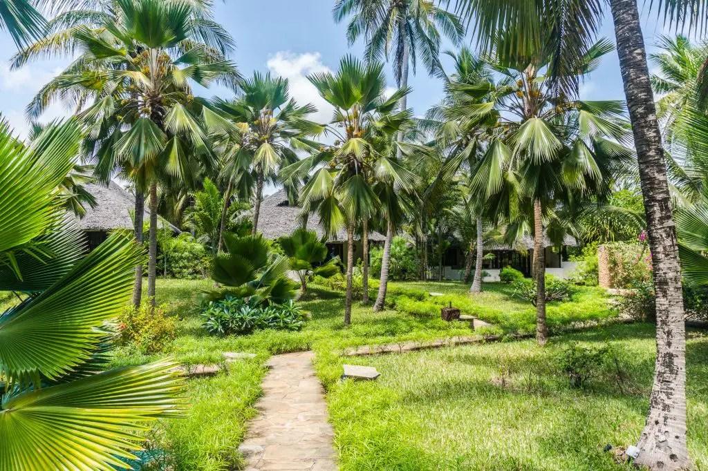 palms hotel zanzibar