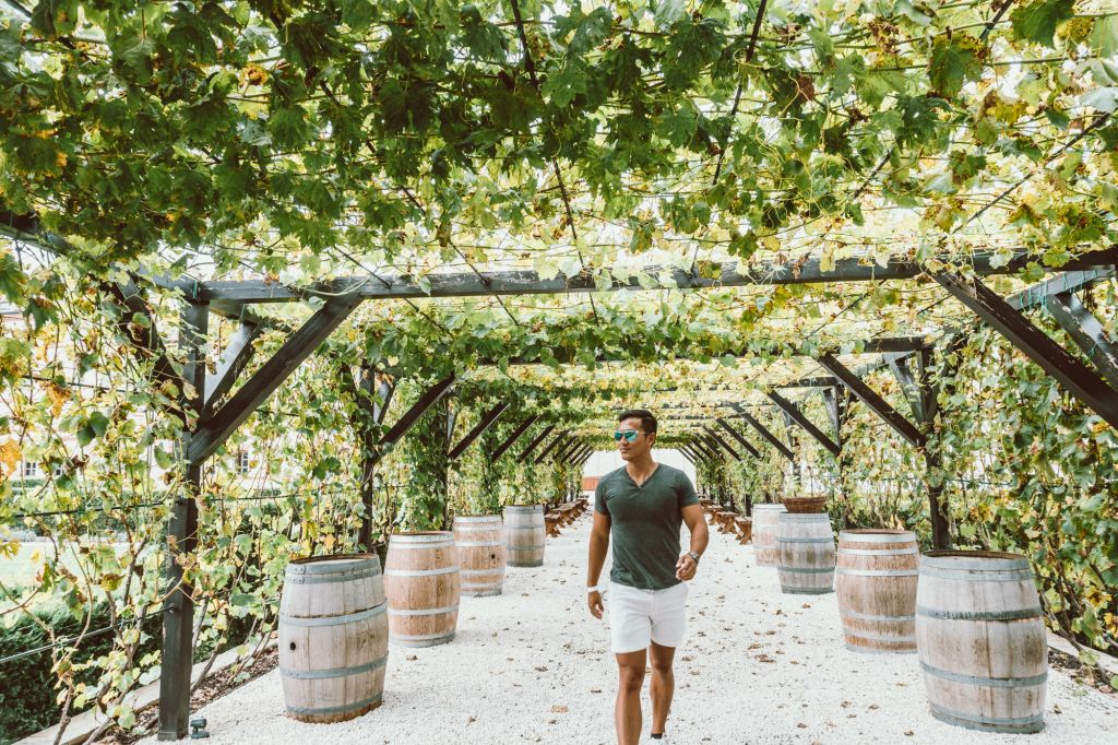 Winery Moldova