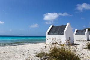 Bonaire-best-picture