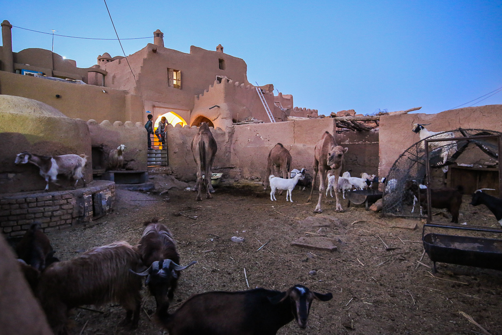 Garmeh Ateshooni Traditional House Animals-1