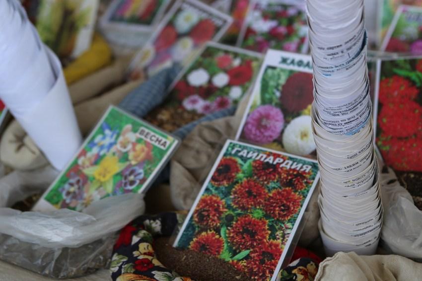 Flower vegetable seeds Market Bukhara Uzbekistan -5257