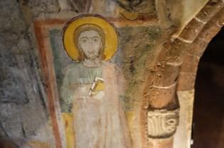 San Teodoro Pavia-9112