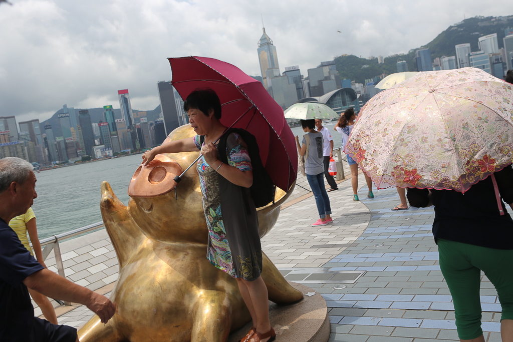 Hong_Kong_Best_Pictures-1825