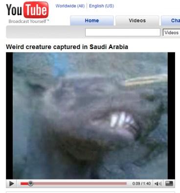 Saudi creature