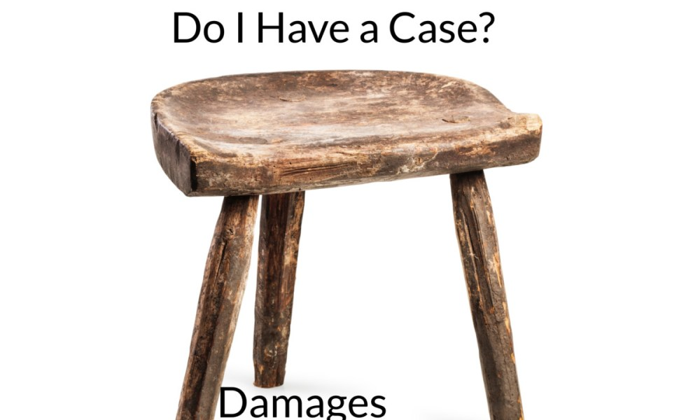 do I have a case damages liability source of recovery