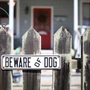 dog-bite-lawyers-conway-sc-dog-attacks-dangerous-animals-dog-bite-law