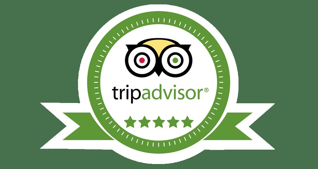 Johnys TripAdvisor Reviews