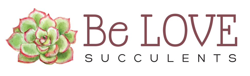 Be LOVE Succulents logo 2