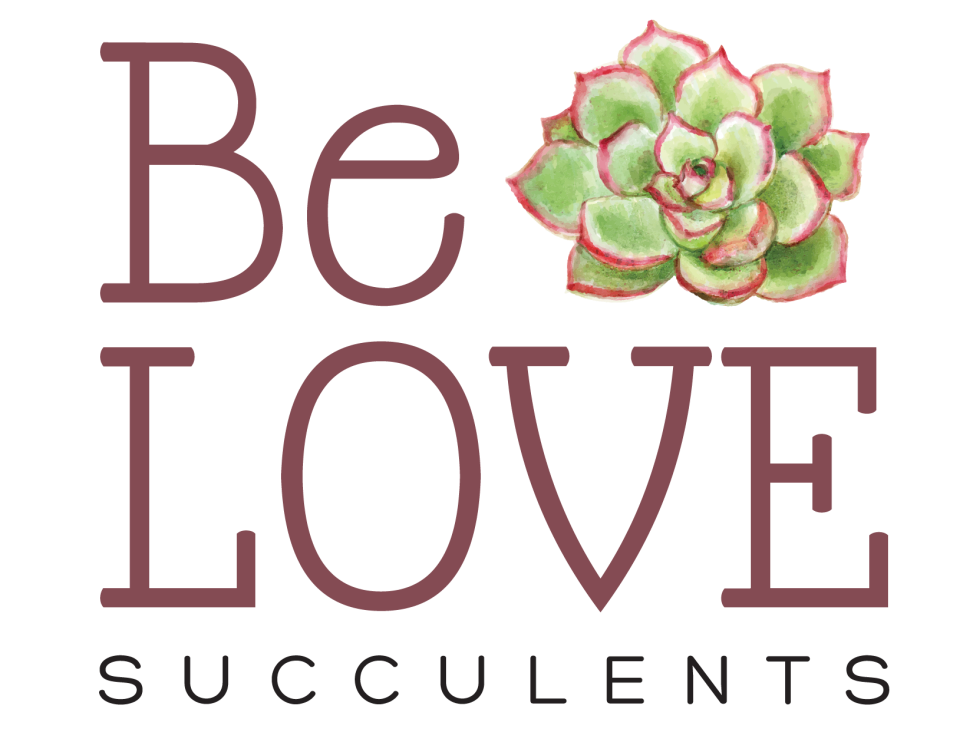 Be LOVE Succulents logo 4