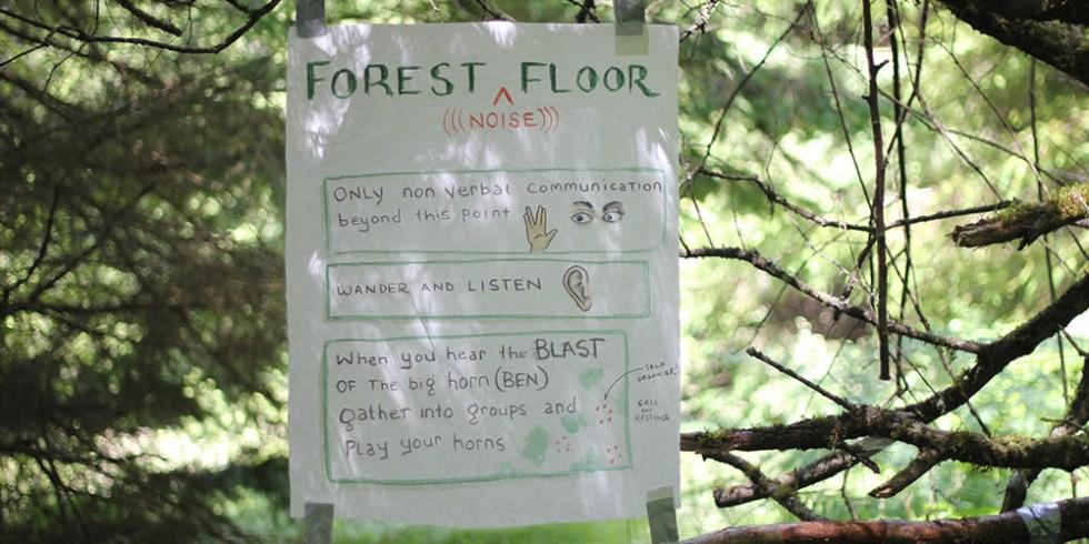 Pilchuck_forest