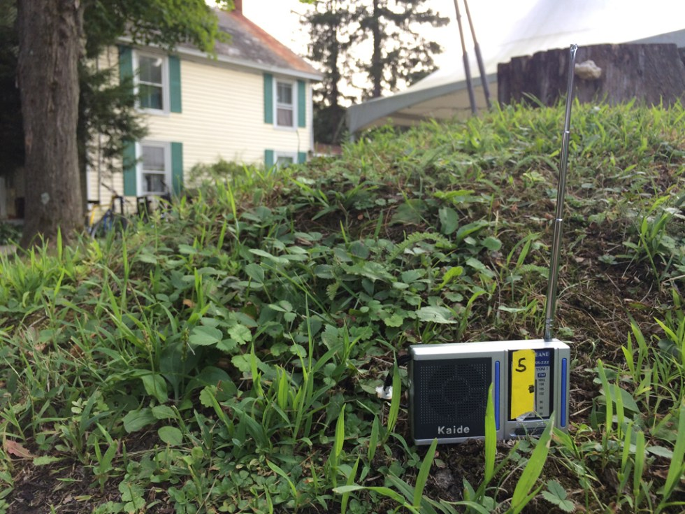 Radios IMG_6799