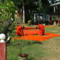 Novice Monks of Sri Wewekarama