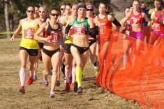 http://shoulpix.wordpress.com/2013/02/02/cross-country-championships/