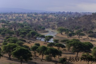 View of Tarangire River from our tent in Tarangire National Park
