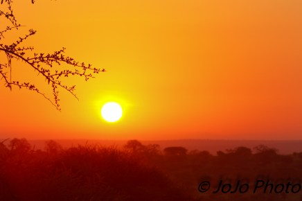 Sunrise at Tarangire Safari Lodge in Tarangire National Park
