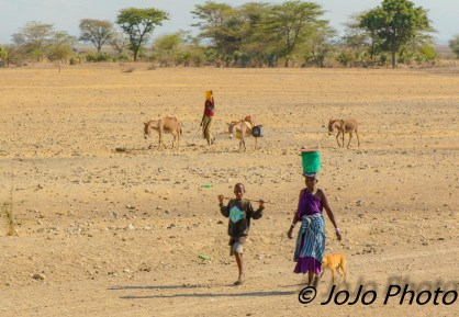 Women with buckets and donkeys in Tanzania