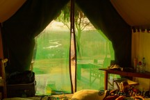 Our Tent at Tarangire Safari Lodge in Tarangire National Park