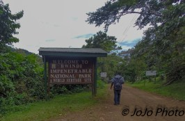 Bwindi Impenetrable National Park entrance