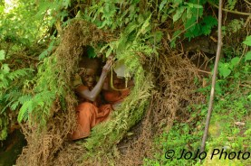 Batwa Pygmy hide-a-way in Bwindi National Park