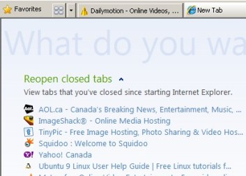 Test out your new settings and see if you get the blueish tab back when you make a new tab.