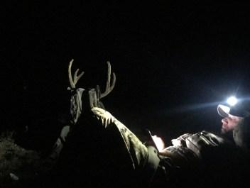 Headlamp Review 2019