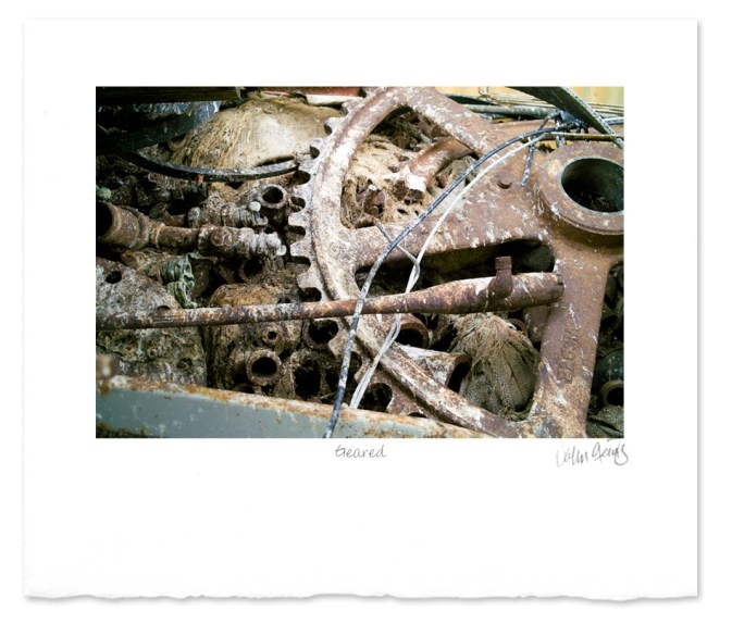 Photograph showing gears and other discarded industrial waste.