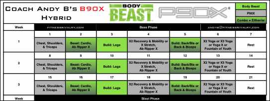 Click for the Body Beast P90X Hybrid