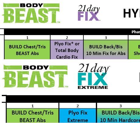 Beast 21DF Hybrid cropped