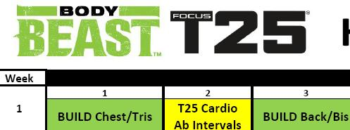 focus t25 gamma phase free download