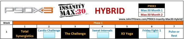 P90X3 Insanity Max30 Hybrid Schedule