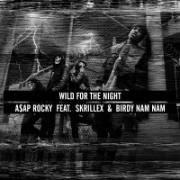 A$AP Rocky ft Skrillex & Birdy Nam Nam - Wild For The Night