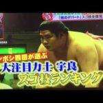 【大相撲技のデパート】宇良の凄すぎる決め技集!その2 #スポーツニュース #followme