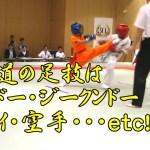 蹴りで勝つ! 新空手 武活道マーシャルアーツライフ bukatudo martialartslife shinkarate Win by kick! #スポーツニュース #followme