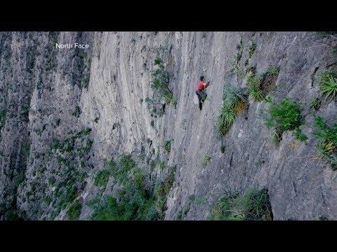 命綱なしのロッククライマーに密着 #ヨセミテ国立公園 観光 #Yosemite #followme
