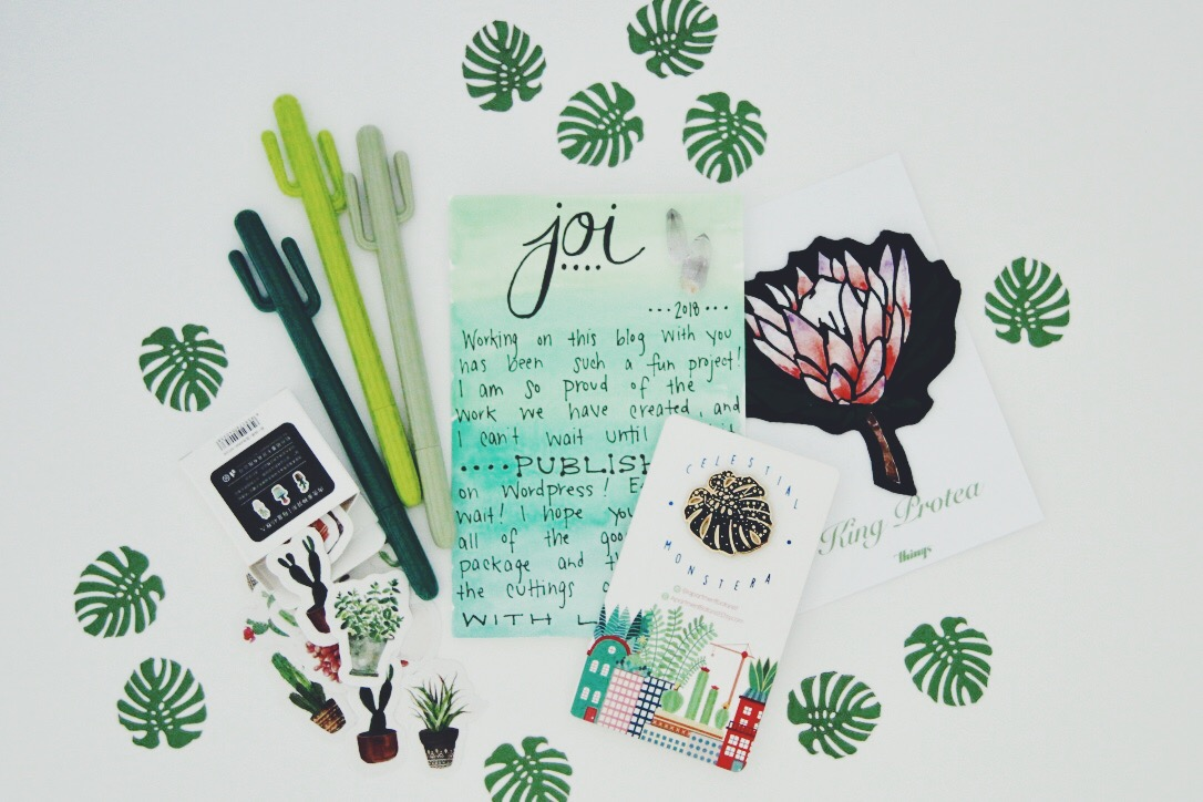 How to Send a Plant Care Package In the Mail & Why You Should