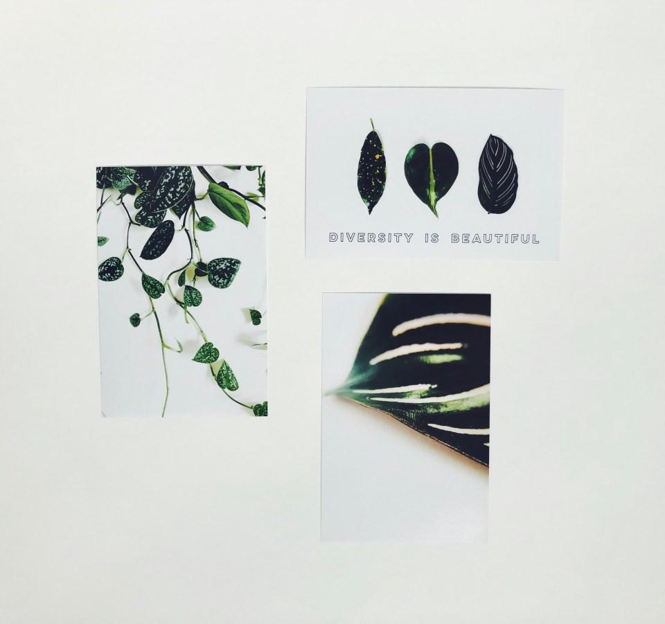 Botanical Art Prints available via Etsy