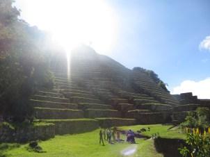 Inca ruins and famous Llama