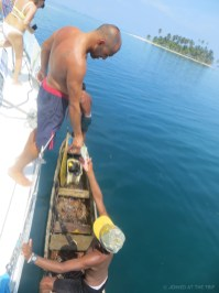 Captain Mike buying fresh lobster