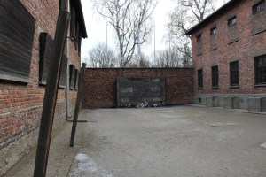 Auschwitz wall of death